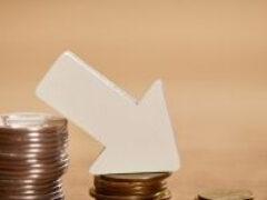 Налоговая служба разъяснила особенности применения моратория на банкротство в отношении отдельных налогоплательщиков