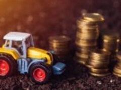 Налоговая служба разъяснила о формате и составе сведений об исчислении инспекциями транспортного и земельного налога