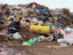 Предлагается штрафовать за мусор, выгруженный из машины в неположенном месте