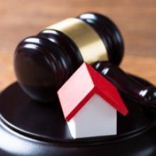 Суд разрешил держать животных в комнате коммунальной квартиры вопреки мнению соседа